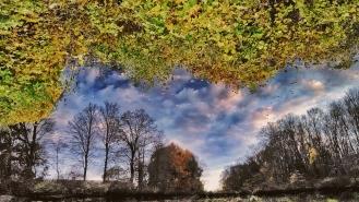 Reflection :)